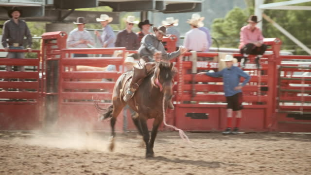 competition rodeo saddle bronc - bucking stock videos & royalty-free footage