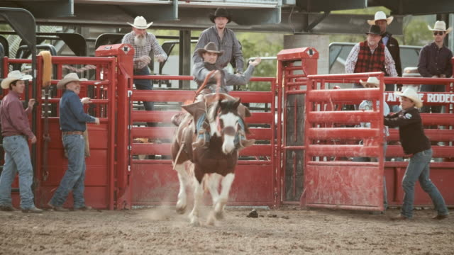 stockvideo's en b-roll-footage met competitie rodeo zadel bronc - cowboyhoed