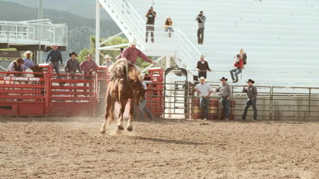 competition rodeo saddle bronc - saddle stock videos & royalty-free footage
