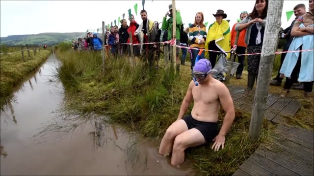 competitors dressed as goldfish and sharks were among over 100 people vying to become the world bog snorkelling champion at an unusual swimming... - bog stock videos & royalty-free footage
