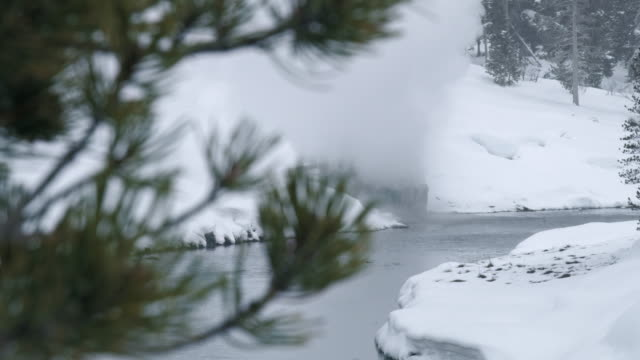 compilation of a geyser erupting by the river - pine stock videos & royalty-free footage