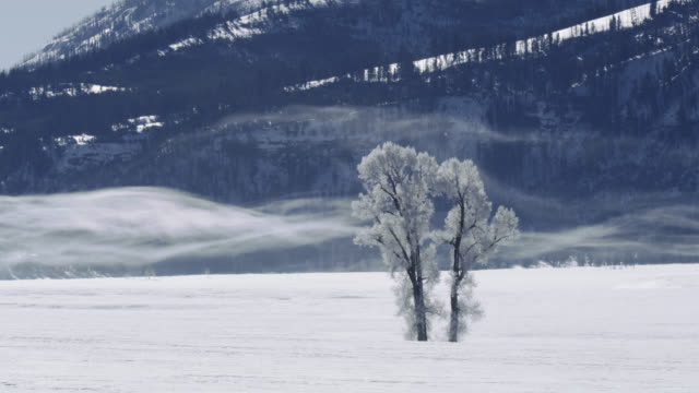 compilation of the diamond dust over the river - ice crystal stock videos & royalty-free footage