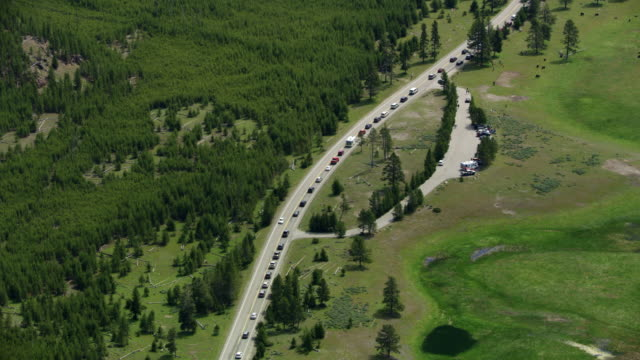 compilation of the traffic through the yellowstone national park - stau stock-videos und b-roll-filmmaterial