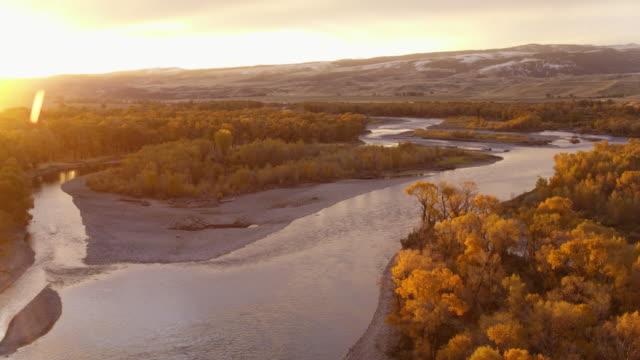 compilation of the yellowstone river at fall - animal themes stock videos & royalty-free footage