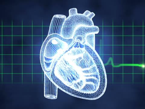 vídeos y material grabado en eventos de stock de computer animated video clip of a pulse monitor superimposed over a heart and other various bones and body parts - músculo humano