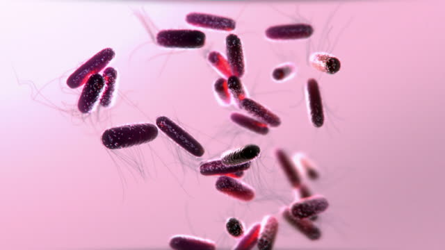 vidéos et rushes de computer generated graphic of purple bacteria float and move against a pink background - science