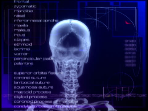 computer generated image rotating human skull with names of brain parts scrolling up and pink ekg moving across screen - biomedizinische illustration stock-videos und b-roll-filmmaterial