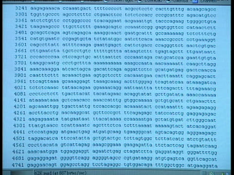 stockvideo's en b-roll-footage met computer monitor scrolls revealing thousands of lines of ctag the dna genetic code sequence - scrollen