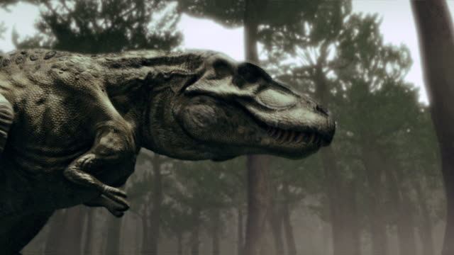 A computer-generated anatomical model highlights the olfactory system of a Tyrannosaurus Rex.