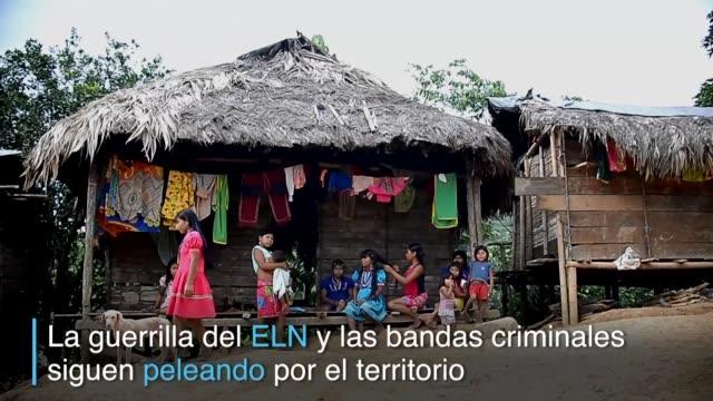 Con escasez de alimentos y sin agua potable ni electricidad indigenas y afrocolombianos intentan sobrevivir a la violencia en la selva del noroeste...