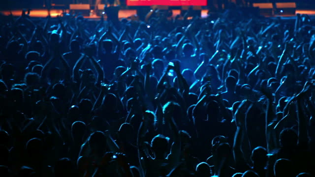concert crowd - spectator stock videos & royalty-free footage