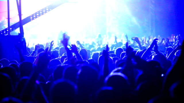 concert crowd. - funky stock videos and b-roll footage