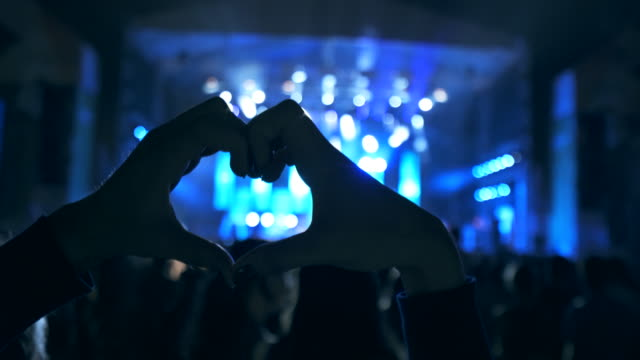concert fans. - pop musician stock videos & royalty-free footage