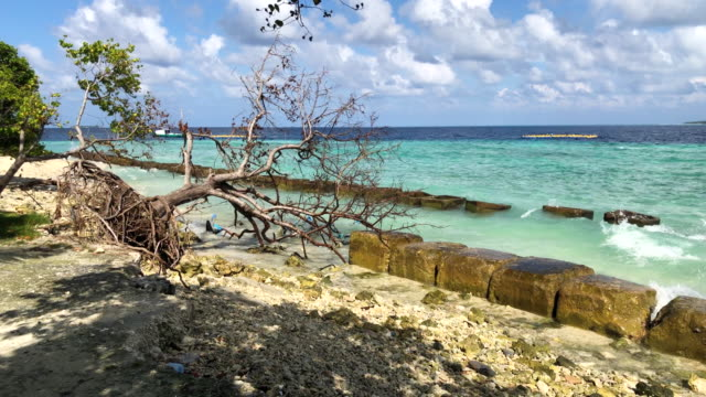 concrete blocks are placed along the shoreline to try and prevent further coastal erosion on december 17 2019 in mahibadhoo maldives the maldives is... - coastal feature stock videos & royalty-free footage