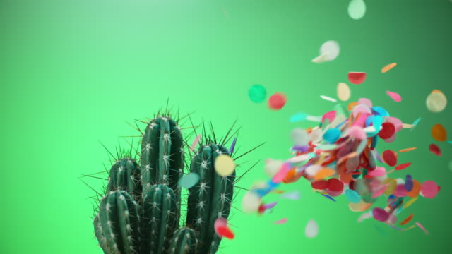 slo mo ld confetti flying around as a balloon pops in touch with a cactus - bombing stock videos & royalty-free footage