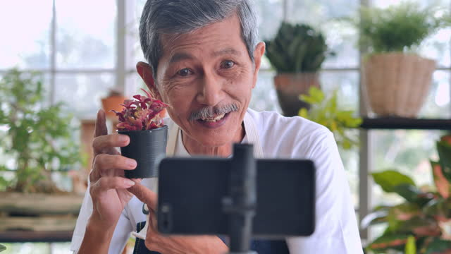 confidence asian senior men age 62 year old speaking in front of camera for vlog.elder man working as blogger while recording video explaining houseplants for sell by streaming live on social media at home. - vendor stock videos & royalty-free footage