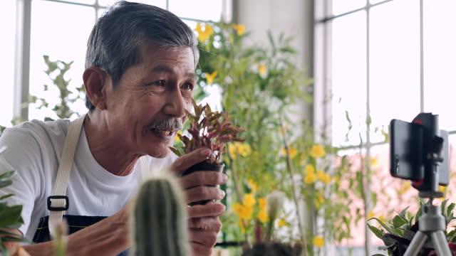 vidéos et rushes de confiance hommes âgés asiatiques âgés de 62 ans parlant devant la caméra pour vlog. homme aîné travaillant en tant que blogger tout en enregistrant la vidéo expliquant des plantes d'intérieur pour vendre en coulant en direct sur les médias soci - new age concept