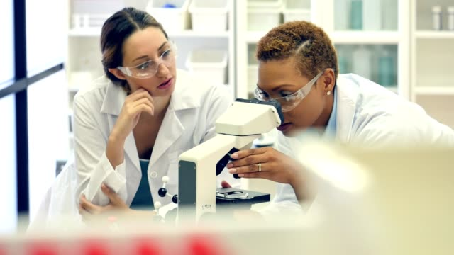 Confident African American female chemist discusses research findings with colleage