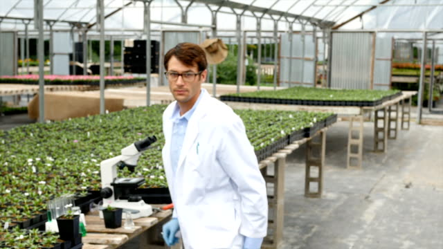 Confident botanist analyzes plants in greenhouse