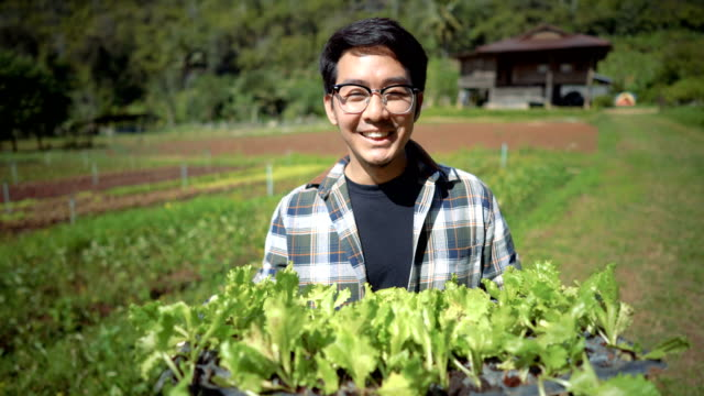 confident farmer proud of his product - thai ethnicity stock videos & royalty-free footage