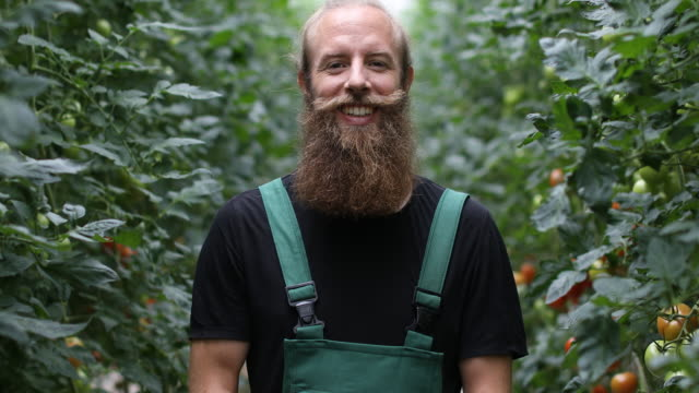 confident farmer standing in greenhouse - bib overalls stock videos and b-roll footage