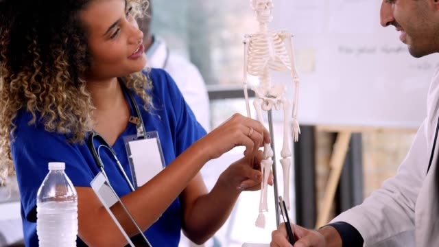 Confident female doctor uses a human skeleton model during meeting
