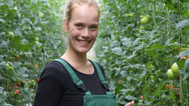 confident female farmer in greenhouse - farmer stock videos and b-roll footage