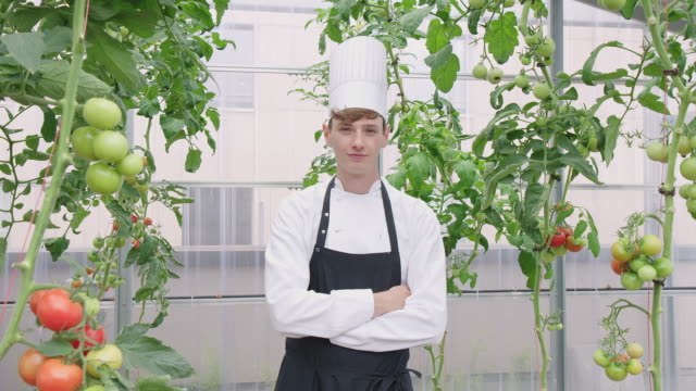 confident hotel chef in greenhouse - chef's hat stock videos & royalty-free footage