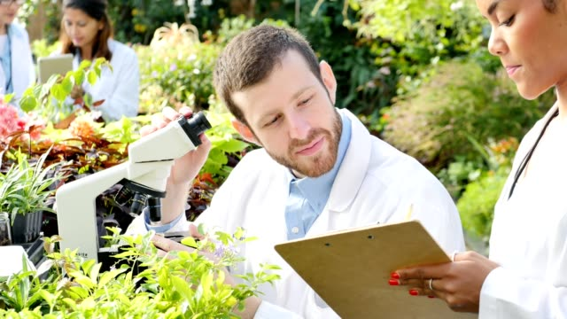 Confident male botanist examines plant sample in nursery