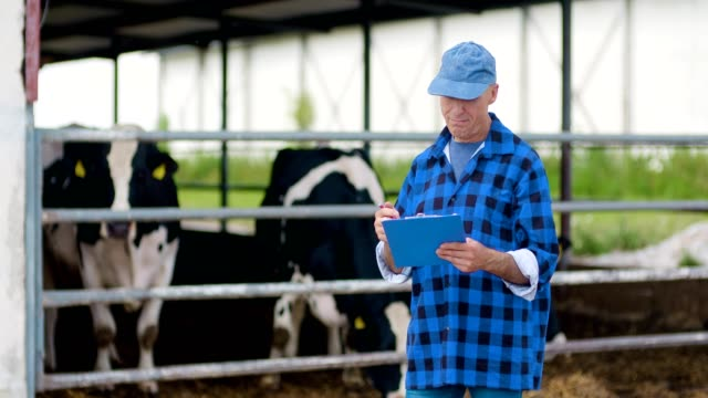 confident male farmer writing on clipboard at farm - livestock stock videos & royalty-free footage