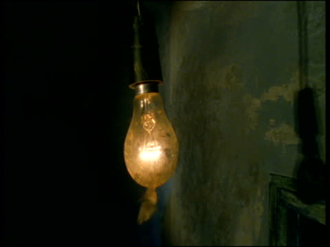 confused moth flies around swinging light bulb, shadows on wall - light bulb stock videos and b-roll footage
