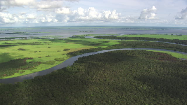 Congo:  Alima river going in the Congo