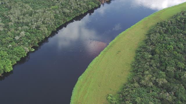 Congo: Alima river