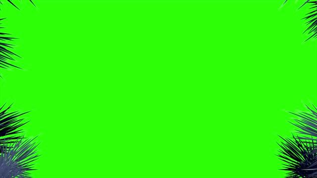 stockvideo's en b-roll-footage met 4k naaldboomtakken en sneeuwvlokken bij de randen van het scherm op een groene achtergrond - kaderrand