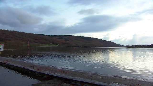 coniston water in cumbria - small group of animals stock videos & royalty-free footage