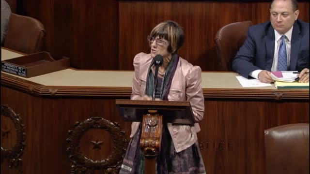 connecticut representative rosa delauro passionately explains the house the risks to babies of microencephaly referring to a washington post report... - youth baseball and softball league stock videos and b-roll footage