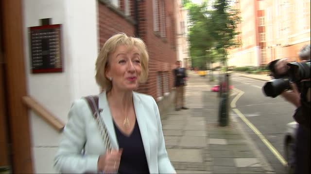 conservative leadership candidate andrea leadsom has published details of her cv after claims her previous roles in financial services were... - andrea leadsom stock-videos und b-roll-filmmaterial