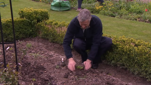 Conservative Mayor of London candidate Zac Goldsmith planting flowers in a garden