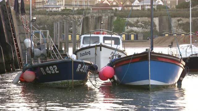 conservative mp craig mackinlay cleared of falsifying election expenses / marion little found guilty of two charges uk kent ramsgate fishing boats at... - ramsgate video stock e b–roll