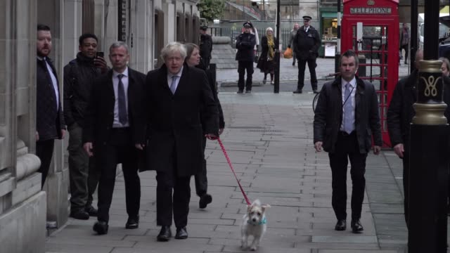 conservative party leader boris johnson walks with his dog dilyn into his polling station at westminster methodist hall on the morning of the general... - conservative party uk stock videos & royalty-free footage
