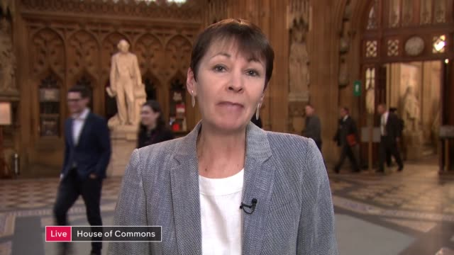 vídeos y material grabado en eventos de stock de three more mps launch their campaigns england london gir int caroline lucas mp live 2way interview from house of commons sot - partido conservador británico