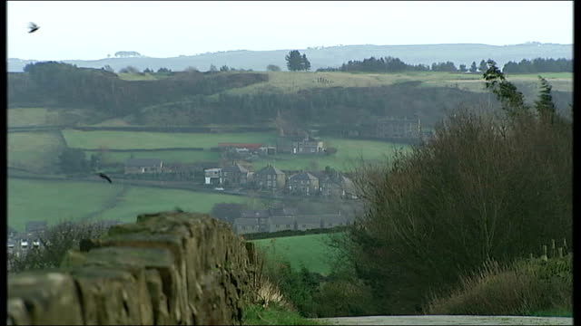 vídeos de stock e filmes b-roll de david cameron campaign to re-connect with voters in the north; england: yorkshire moors: scapegoat hill: ext good shot undulating countryside with... - remote location