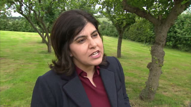 consevative peer and former cabinet member baroness warsi has switched sides in the eu referendum debate she's backing an 'in' vote after she accused... - baroness stock videos & royalty-free footage