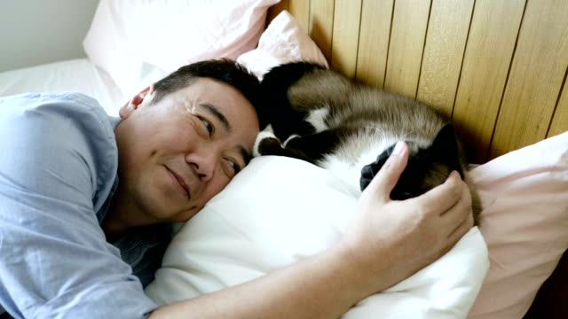 consoling with pet cat - sad old asian man stock videos & royalty-free footage