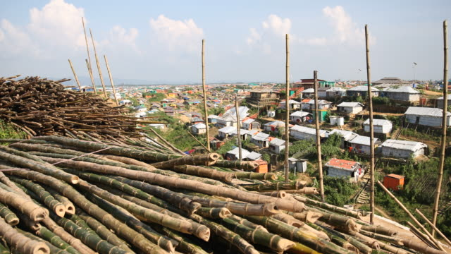 construction material of bamboo for huts in the refugee camp of the rohingyas near cox's bazar in bangladesh in camp 4 in kutupalong, ukhiya in the... - bamboo plant stock-videos und b-roll-filmmaterial