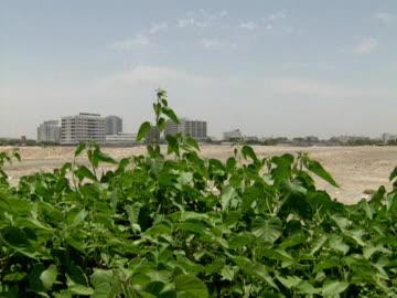 construction site on outskirts of jeddah, saudi arabia; 1996 - jiddah stock videos & royalty-free footage