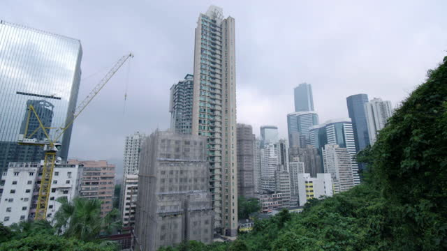 construction using bamboo scaffolding in hong kong - bamboo plant stock videos & royalty-free footage