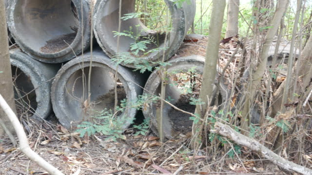 construction waste in forest - pipe tube stock videos and b-roll footage