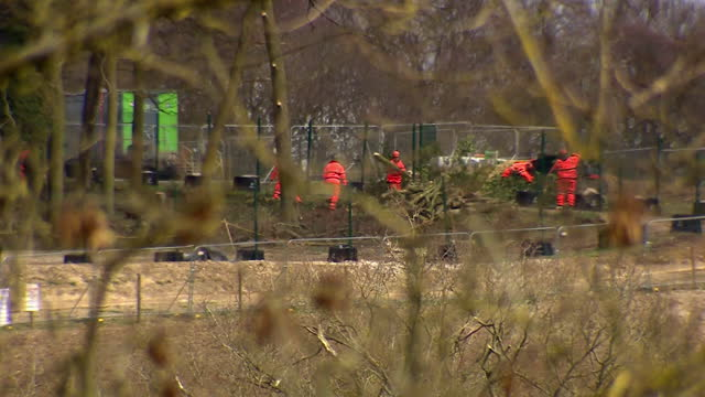 construction workers at jones hill wood, buckinghamshire, who are clearing part of the ancient woodland for work on hs2 high speed rail link - tree area stock videos & royalty-free footage
