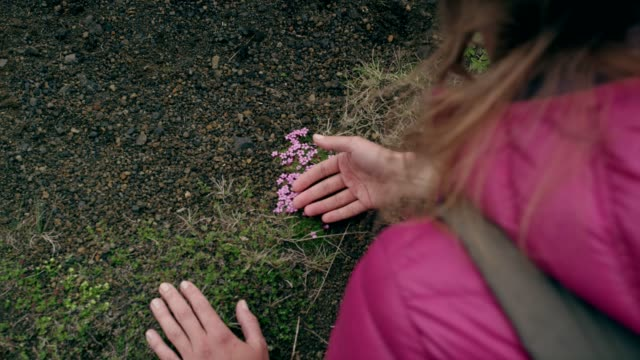 vídeos de stock e filmes b-roll de contact with nature. woman touching rocks and moss - dedo humano